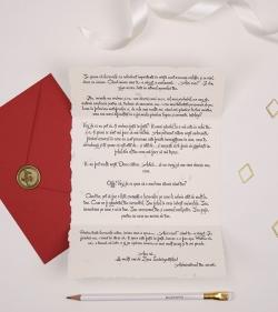 Cadou pentru crush de Valentine's Day - Scrisoare cu mesaj de Ziua Indragostitilor - Secret Admirer_catbox 3